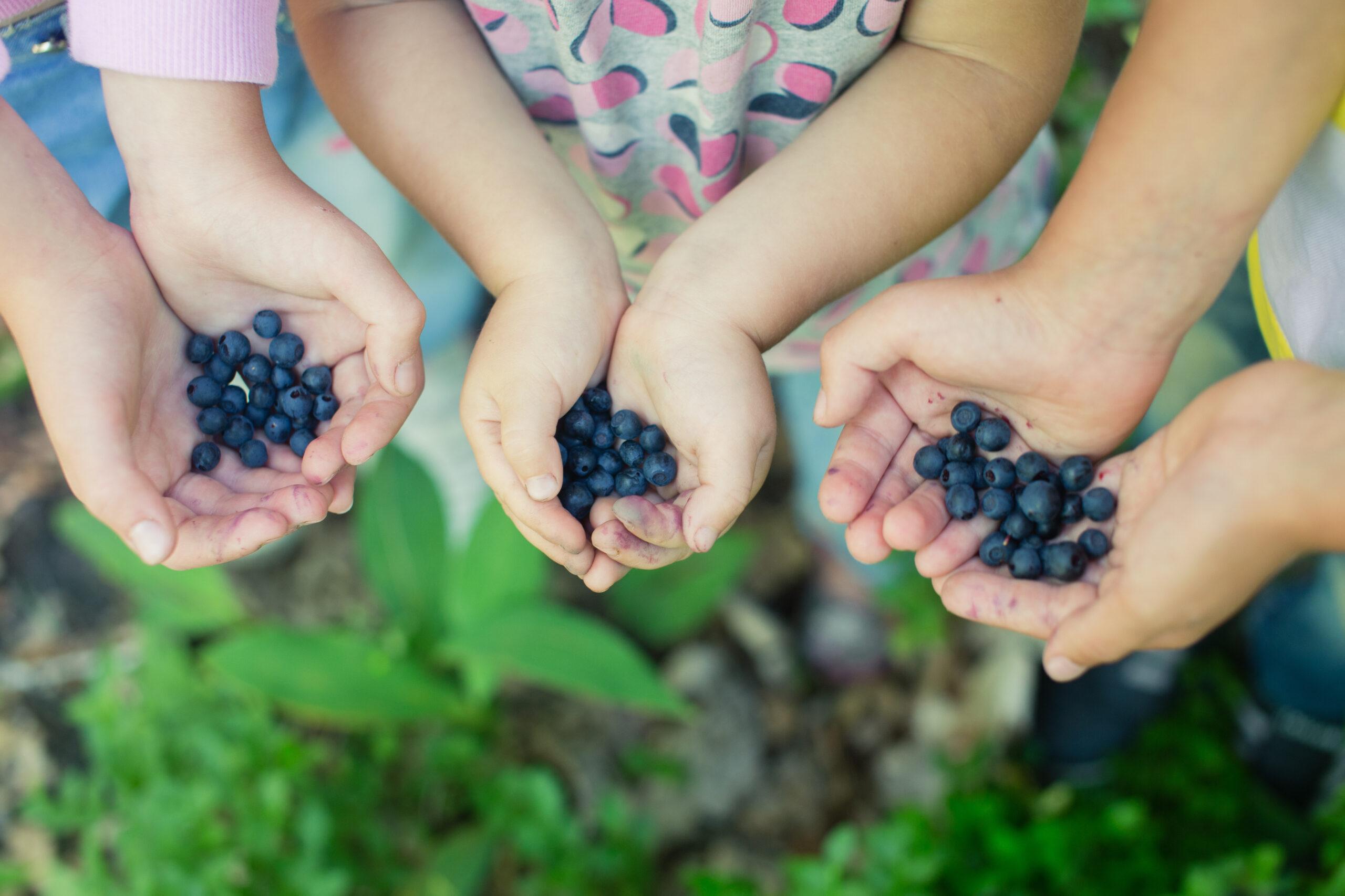 Kinder-Naturheilkunde